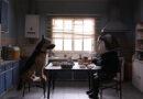 «Bestia» es el cortometraje latinoamericano ganador del festival chilemonos 2021